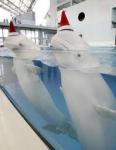 nat delf.png