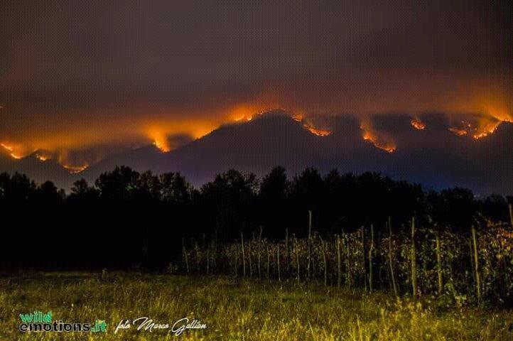 La Val di Susa brucia. L'appello e l'intervento